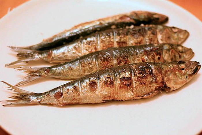 sardina Eventi
